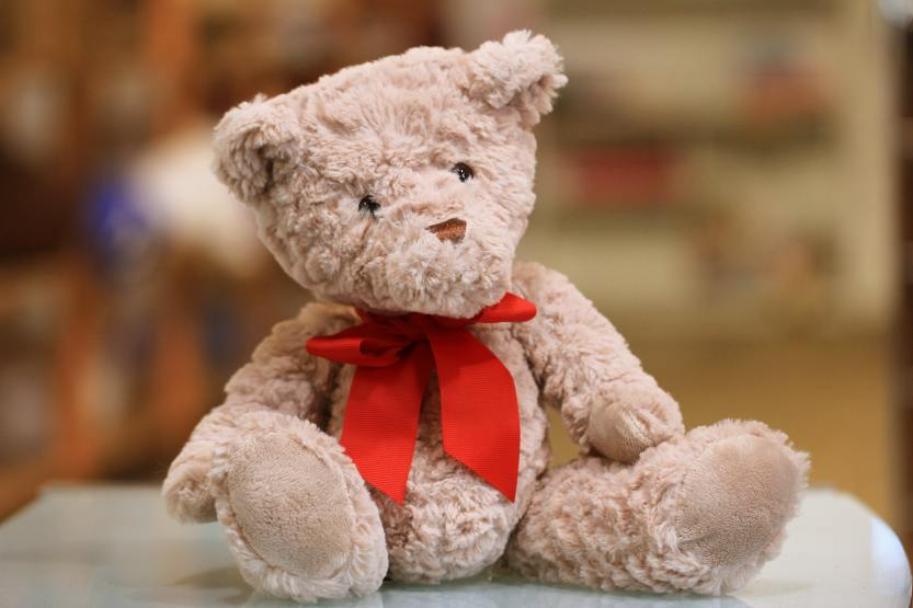 A pre-loved teddy bear in a second hand store