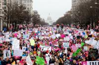 The 2017 Women's March in Washington, DC