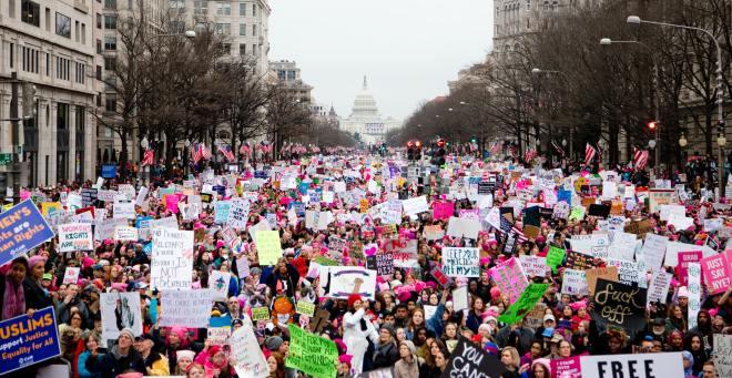The 2017 Women's March in Washington, DC